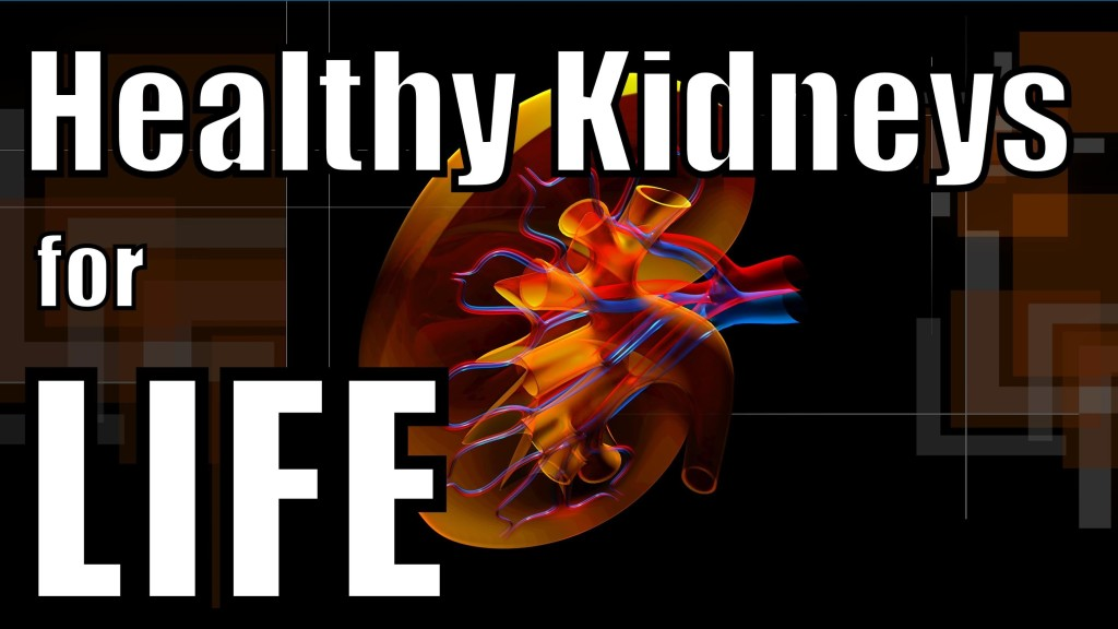 Beer gives you healthier kidneys