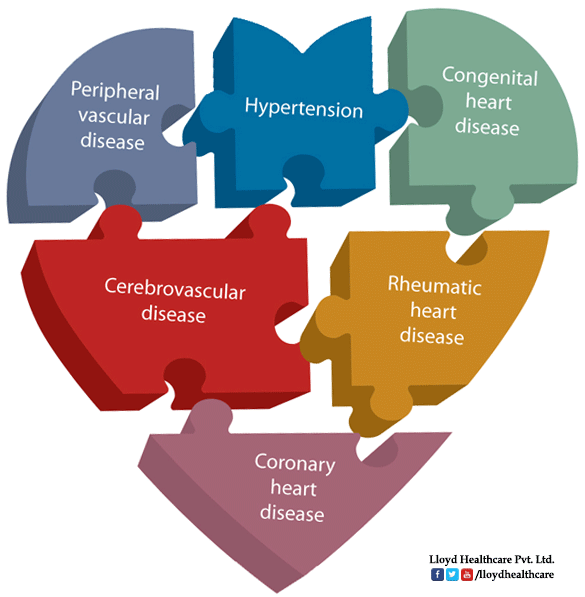Source : Cardiovascular Disease Types