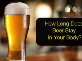 How Long Does Beer Stay In Your system