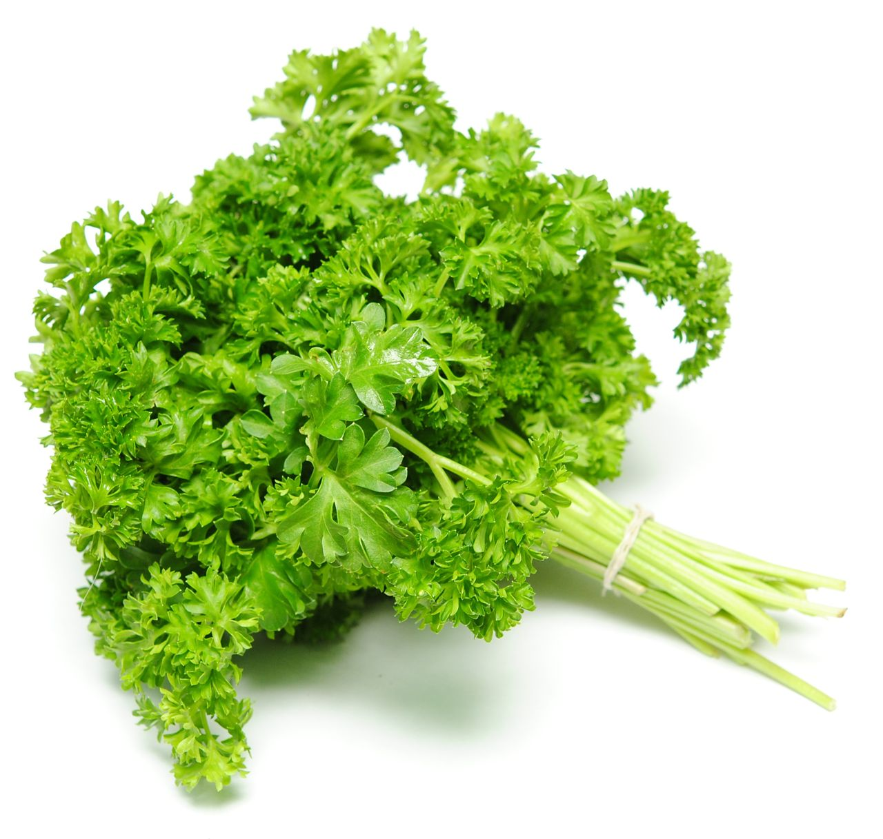 Parsley to soothe your love bite