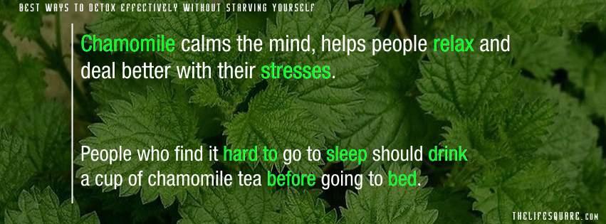 herbal peppermint tea benefits
