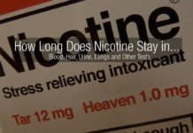 How long does nicotine stay in your system blood urine hair test