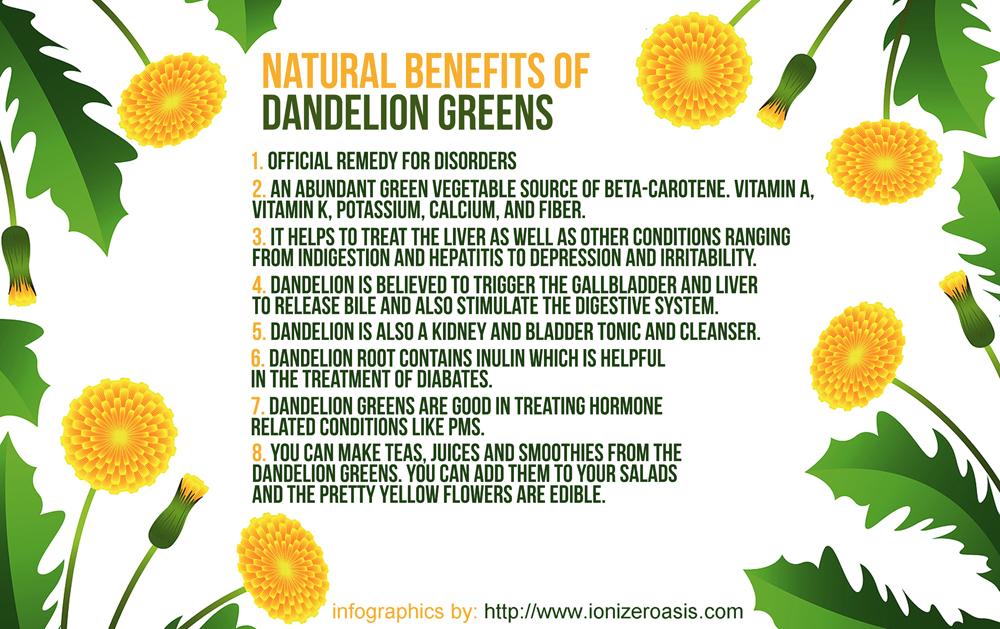 Benefits And Wonders Of Dandelion Tea