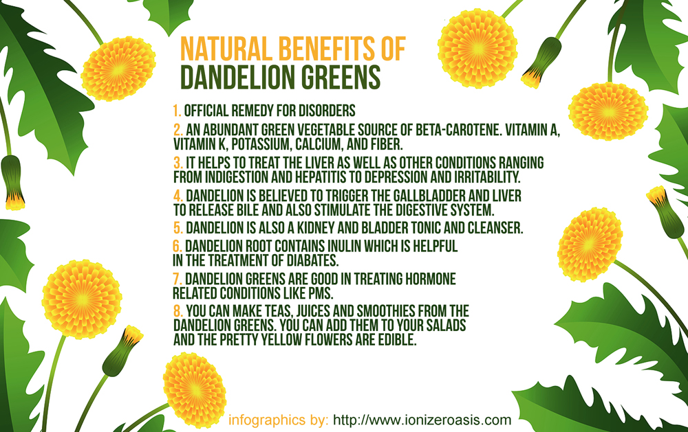 Image source ionizeroasis com dandelion greens