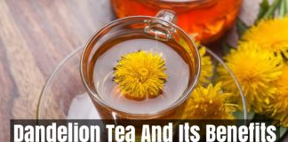 Dandelion Tea And Its Benefits
