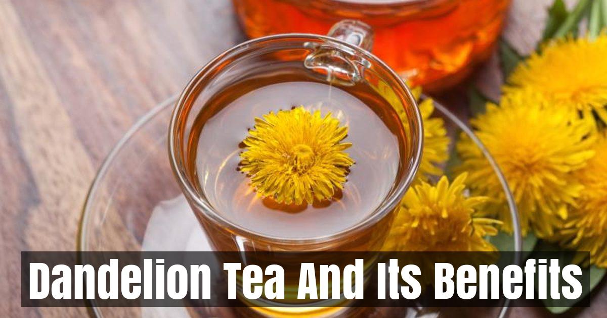 Dandelion Tea And Its Benefits